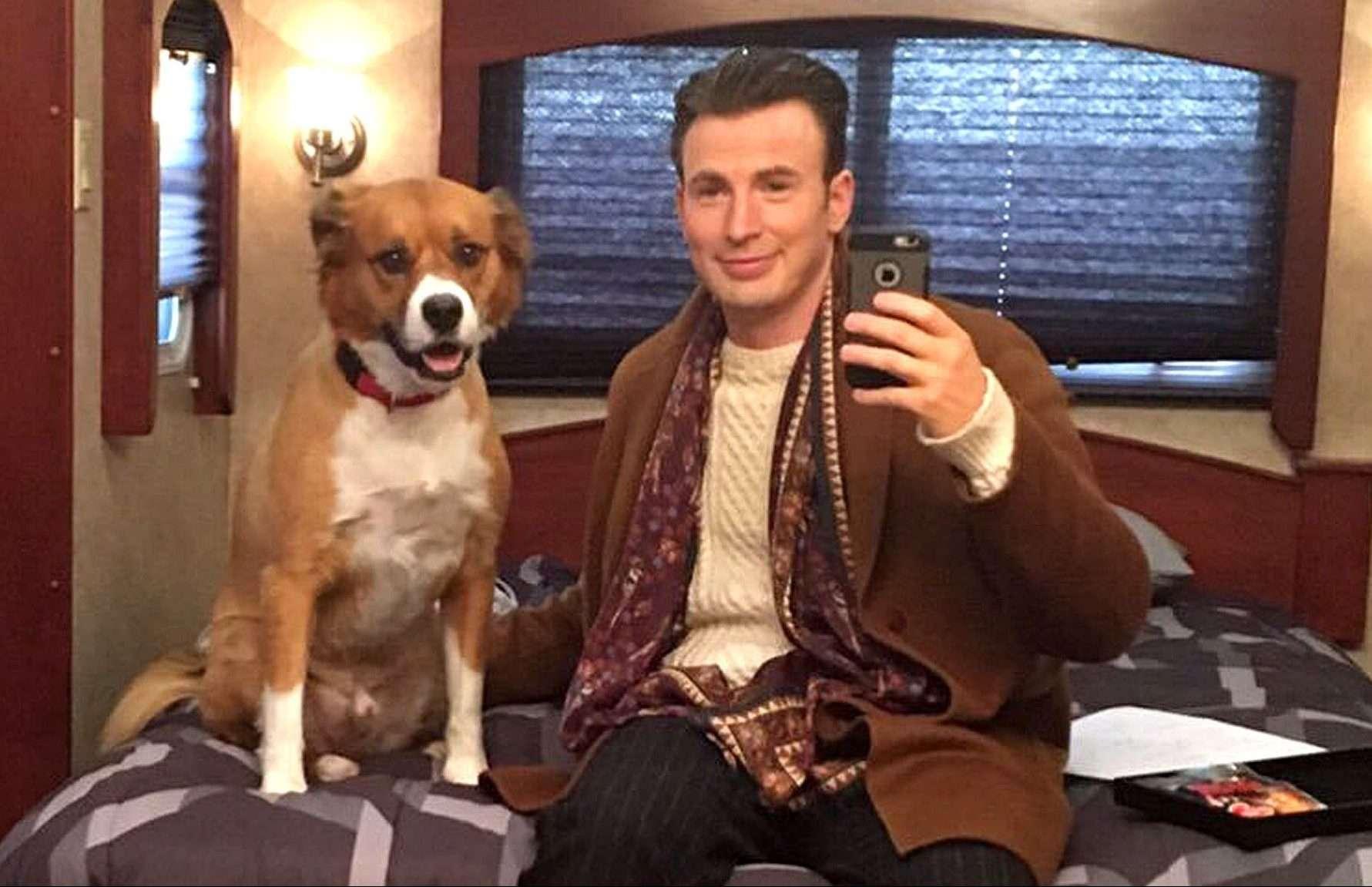 Chris-Evans-His-Dog-Dodger.jpg