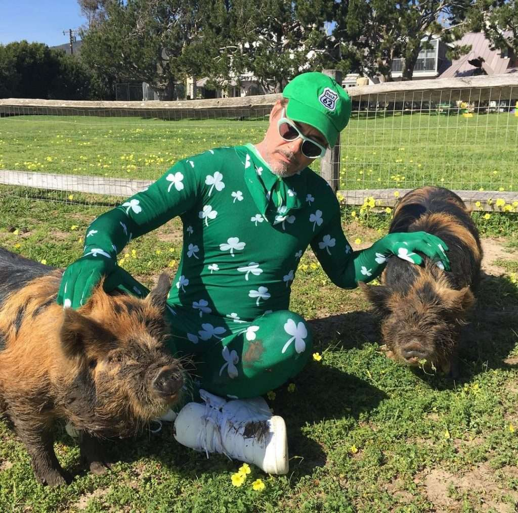 robert-downey-jr-loves-animals.jpg